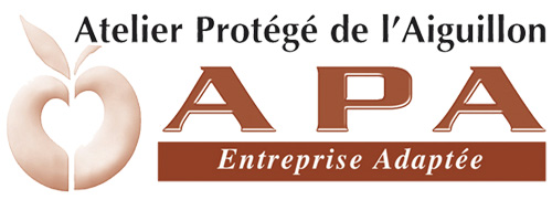 APA Entreprise adaptée